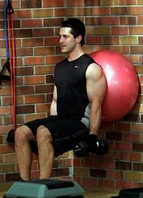 wall-squat-with-dumbbell-and-stability-ball.jpg
