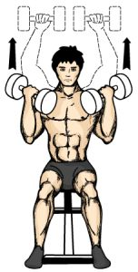arnold-dumbbell-press-diagram.jpg