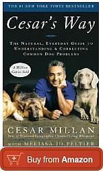 cesar-way-the-natural-everyday-guide-to-understanding-and-correcting-common-dog-problems.jpg