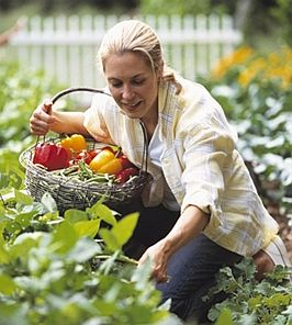 Grandma-harvesting-fruit-backyard.JPG